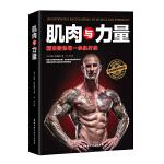 肌肉与力量:精准锻炼每一条肌纤维