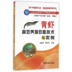 青虾高效养殖致富技术与实例