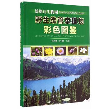 博格达生物圈野生维管束植物彩色图鉴(精)