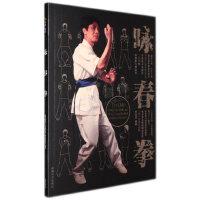 咏春拳基础入门教学视频教程全套木人桩书 DVD光盘碟片 李志河