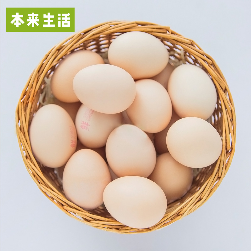 【本来生活】本来散养土鸡蛋20枚林地散养 蛋味香浓