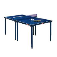 红双喜DHS T919乒乓球桌家庭娱乐乒乓球台 送网架/球/拍