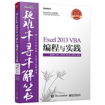 疑难千寻千解丛书Excel 2013 VBA编程与实践