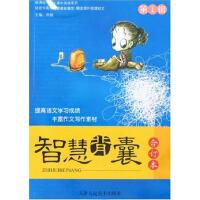 中学生阅读系列・智慧背囊・第1辑(电子书)