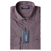 雅戈尔秋季男新款 商务正装 免烫长袖衬衫 XP11183-41T专柜正品