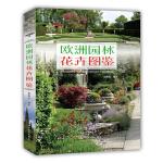 欧洲园林花卉图鉴