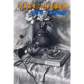 【rt5】美术高考三小时实战范例:王昭举素描静物 王昭举 吉林美术出版