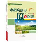 水稻病虫害原色图谱