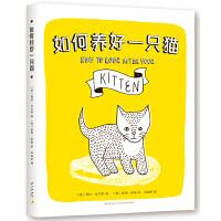 如何养好一只猫